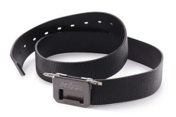 Picture of TOOL BELT - 2020